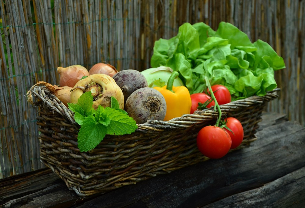 claudio tozzi alimentazione paleo dieta