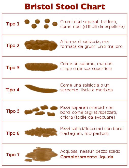 tabella Bristol consistenza delle feci