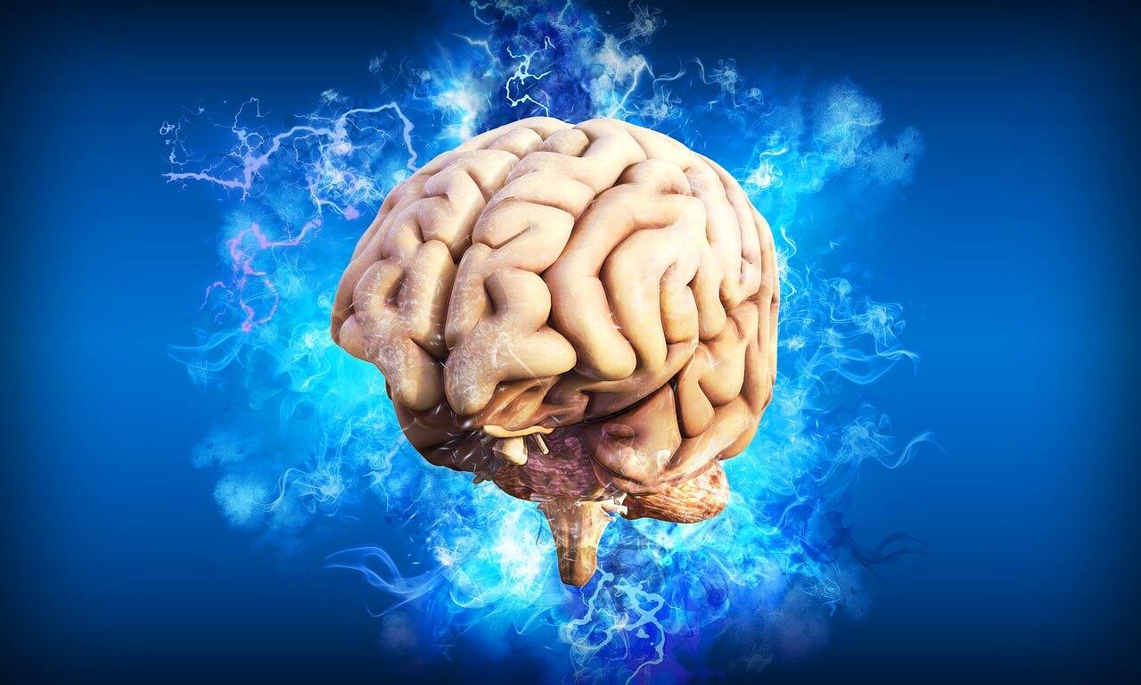 memory+ potenzia la memoria