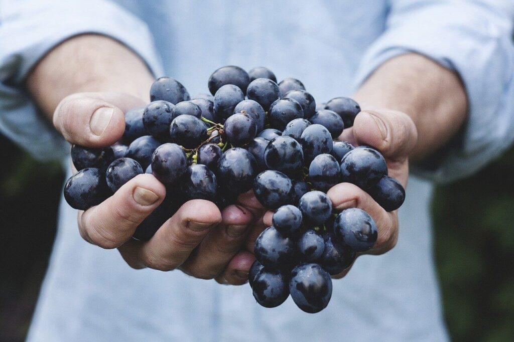 uva per dimagrire