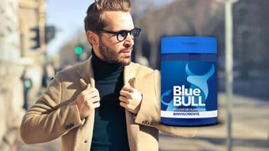 blue bull recensione e opinioni