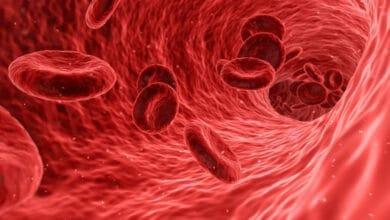 linee guida per l'ipertensione