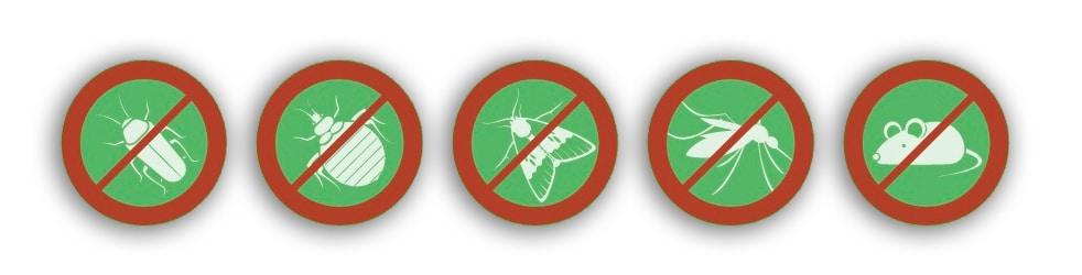 gli ultrasuoni allontanano insetti e roditori